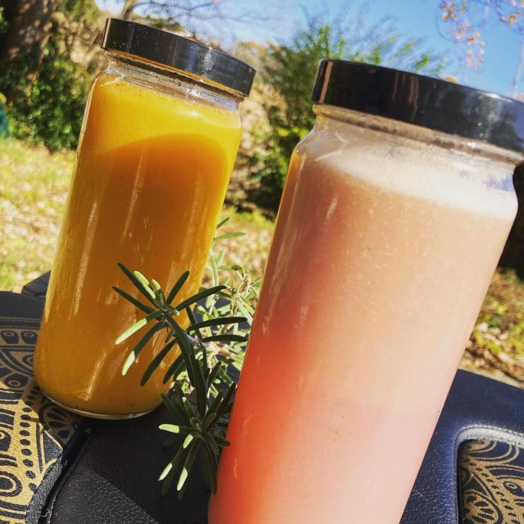 Bottles of Butternut Pumpkin Pie Spice juice and Cabbage-Cranberry-Pear flavors of fresh, raw, organic, cold-pressed juices.